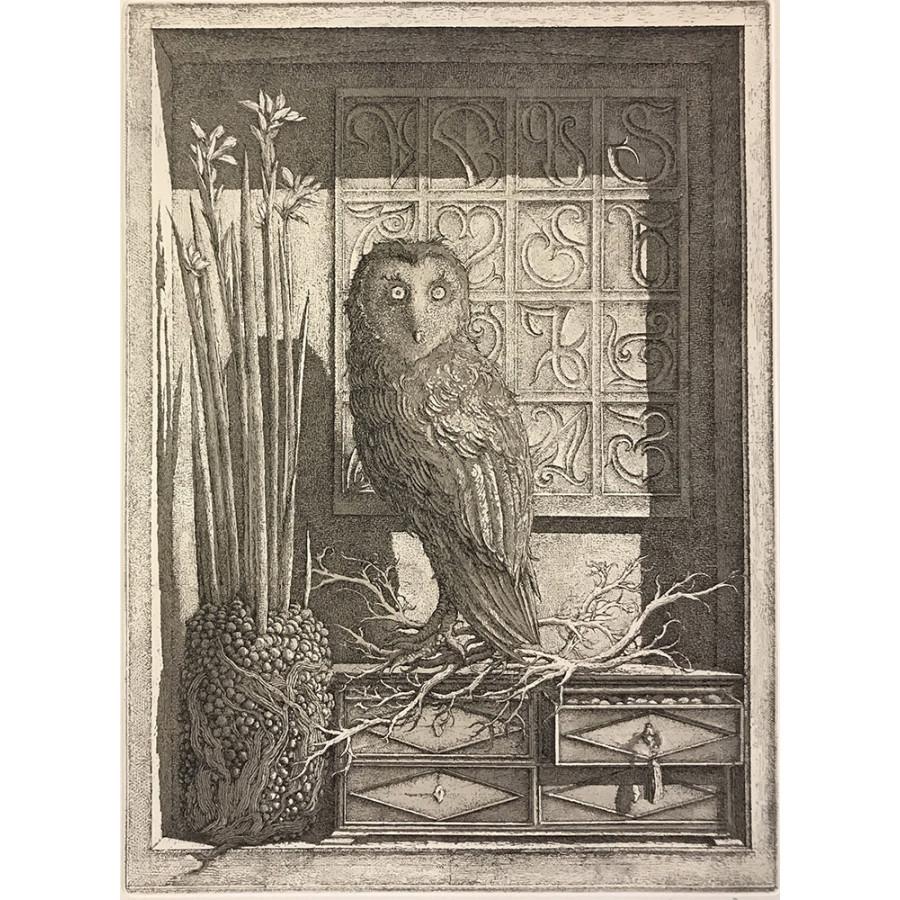 L'Oiseau de Minerve